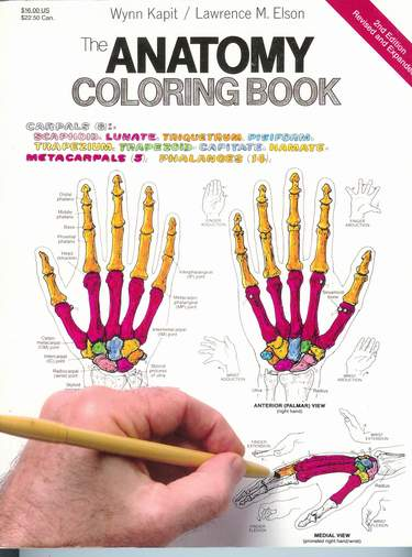 Image for The Anatomy Coloring Book [Second Edtion]