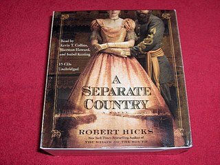 Image for A Separate Country : A Novel