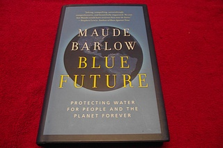 Image for Blue Future: Protecting Water for People and the Planet Forever