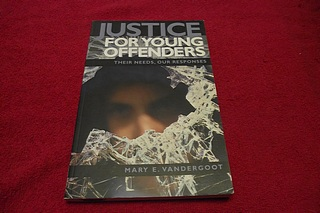 Image for Justice for Young Offenders : Their Needs, Our Responses