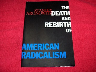 Image for The Death and Rebirth of American Radicalism