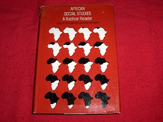 Image for African Social Studies : A Radical Reader