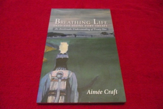 Image for Breathing Life into the Stone Fort Treaty: An Anishinabe Understanding of Treaty One