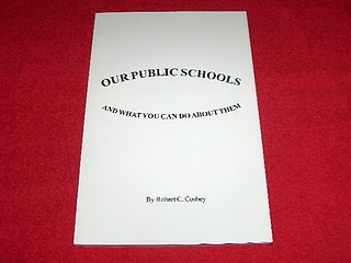 Image for Our Public Schools And What You Can Do About Them