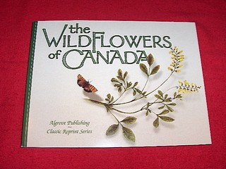 Image for The Wildflowers of Canada