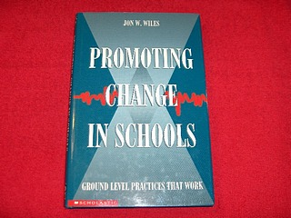 Image for Promoting Change in Schools : Ground Level Practices That Work