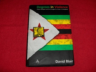 Image for Degrees in Violence : Robert Mugabe and the Struggle for Power in Zimbabwe