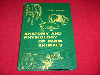 Image for Anatomy and Physiology of Farm Animals