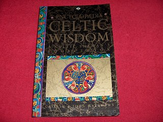 Image for The Encyclopaedia of Celtic Wisdom : The Celtic Shaman's Sourcebook