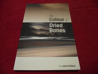Image for The Colour of Dried Bones