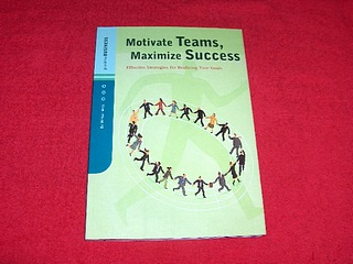 Image for Motivate Teams, Maximize Success : Effective Strategies for Realizing Your Goals