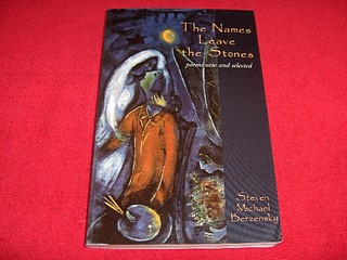 Image for The Names Leave the Stones : Poems New and Selected